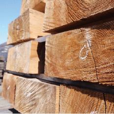 01 自然素材・国産木材を使う